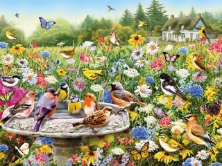 Собирать пазл Птичий рай онлайн