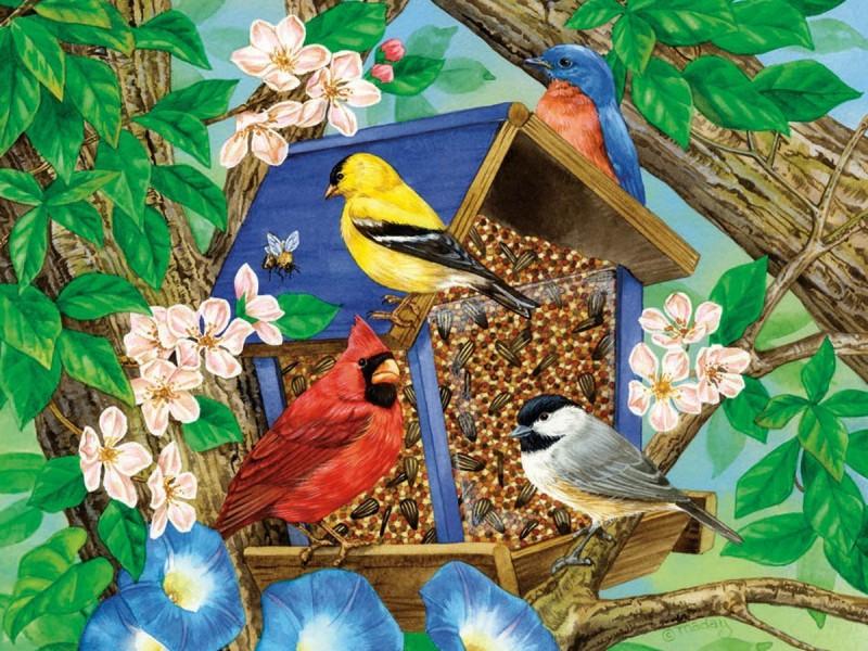 Пазл Собирать пазлы онлайн - Птички