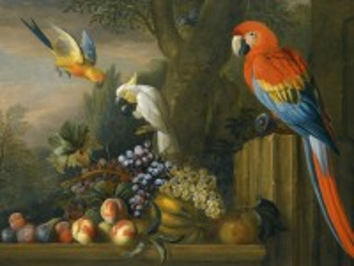 Собирать пазл Птицы и фрукты онлайн