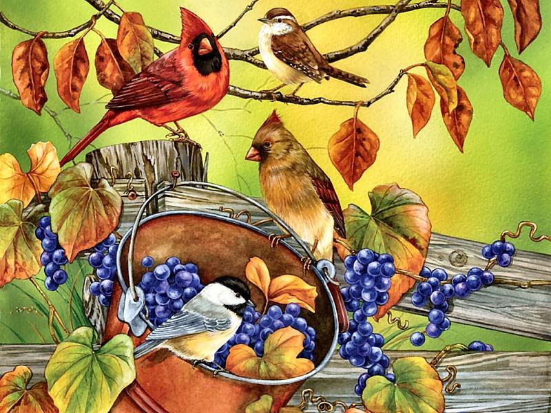 Пазл Собирать пазлы онлайн - Птицы и виноград