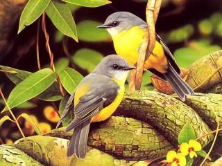 Собирать пазл Птицы на дереве онлайн