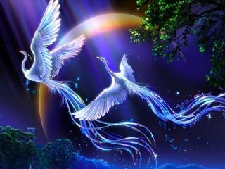 Собирать пазл Птицы счастья онлайн