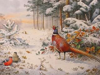 Собирать пазл Птицы в лесу онлайн