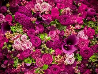 Собирать пазл Пурпурные цветы онлайн