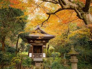 Собирать пазл Ранняя осень в Киото онлайн