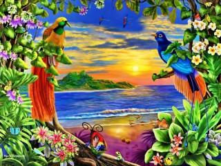 Собирать пазл Райские птицы онлайн