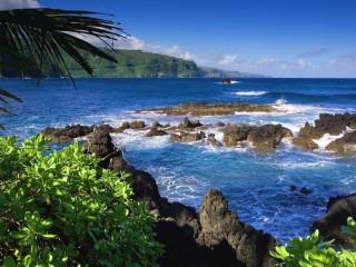 Собирать пазл Райский остров онлайн