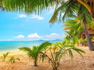 Собирать пазл Райский пляж онлайн