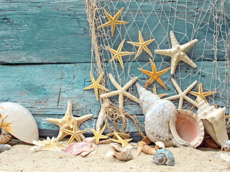 Пазл Собирать пазлы онлайн - Разное морское
