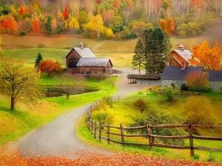 Собирать пазл Разноцветная осень онлайн