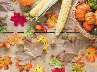 Собирать пазл Разноцветные листья онлайн