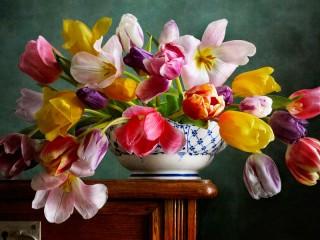 Собирать пазл Разноцветные тюльпаны онлайн