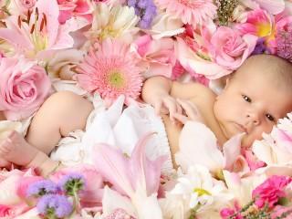 Собирать пазл Ребенок среди цветов онлайн