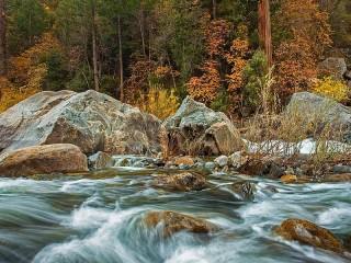 Собирать пазл Река и осенний лес онлайн