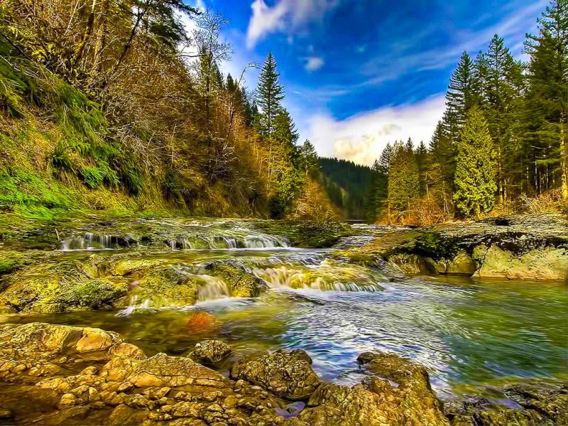 Пазл Собирать пазлы онлайн - Река пороги