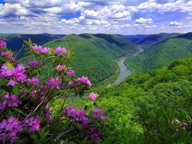 Пазл Собирать пазлы онлайн - Река в долине
