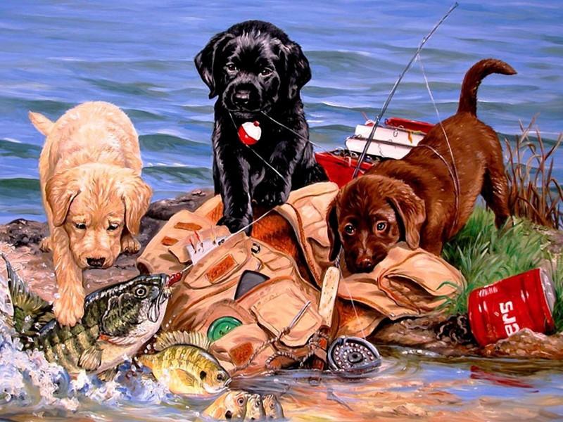 Пазл Собирать пазлы онлайн - Рыбаки