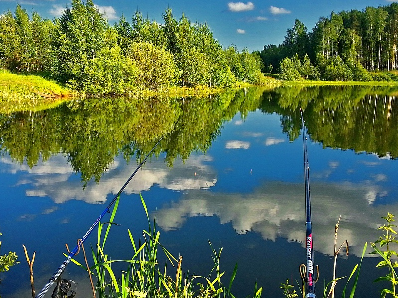 Пазл Собирать пазлы онлайн - Рыбалка на озере