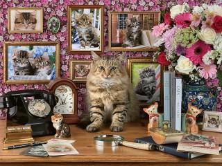 Собирать пазл Родственники кота онлайн