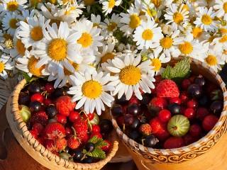 Собирать пазл Ромашки и ягоды онлайн