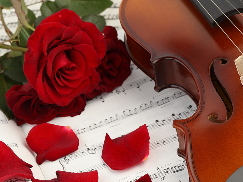 Пазл Собирать пазлы онлайн - Роза и скрипка