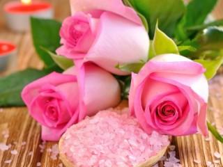 Собирать пазл Розы онлайн