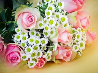 Собирать пазл Розы и ромашки онлайн
