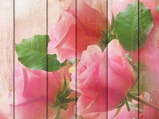 Собирать пазл Розы на досках онлайн