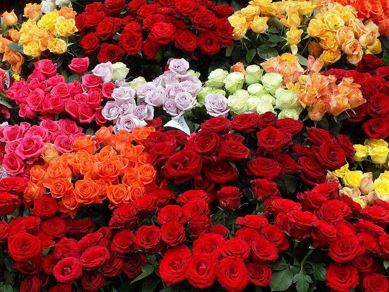 Пазл Собирать пазлы онлайн - Розы на продажу
