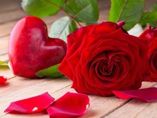 Собирать пазл Розы в подарок онлайн