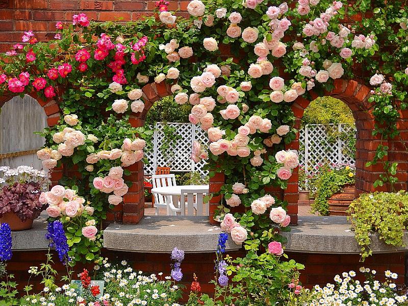 Пазл Собирать пазлы онлайн - Розовая беседка в саду