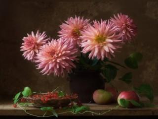 Собирать пазл Розовые георгины онлайн