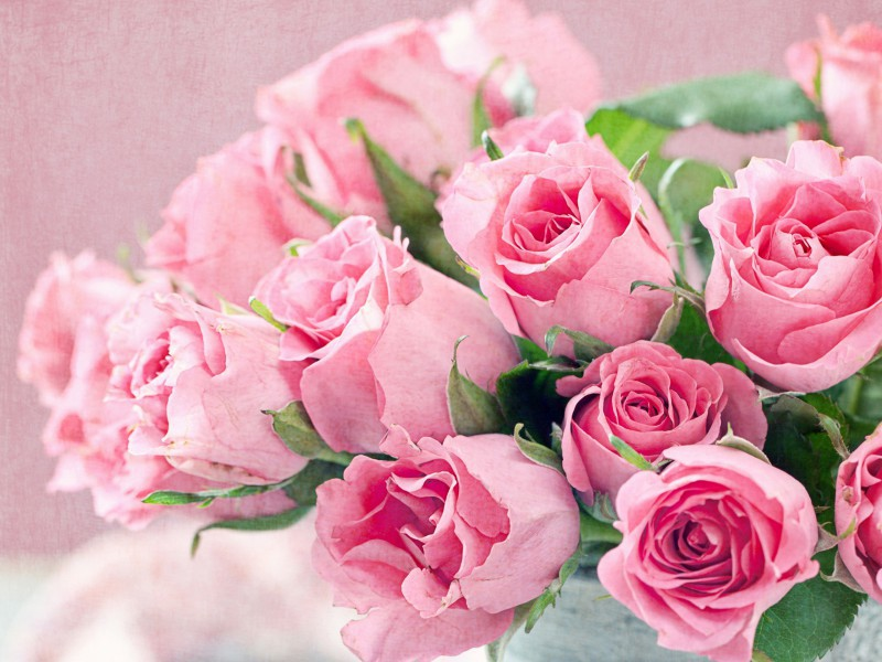 Пазл Розовые розы