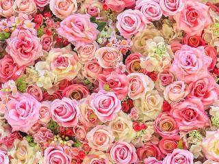 Собирать пазл Розовые розы онлайн