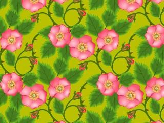 Собирать пазл Розовый шиповник онлайн