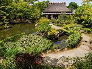 Собирать пазл Сад в Японии онлайн
