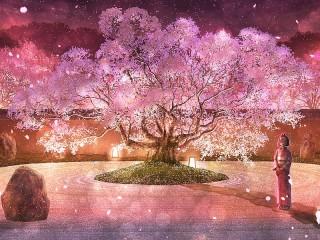 Собирать пазл Сакура и фонари онлайн