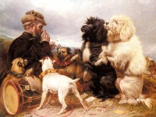 Собирать пазл Счастливые собаки онлайн