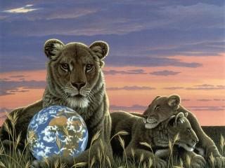Собирать пазл Семья львов онлайн