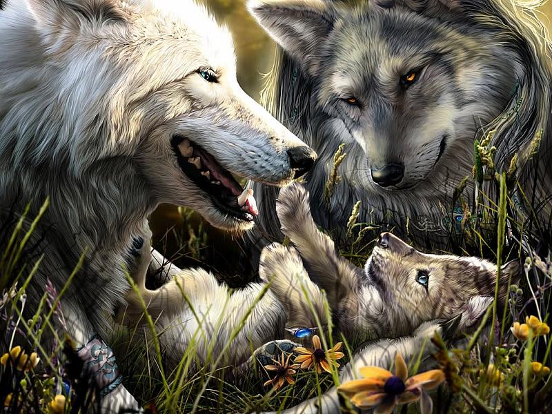 Пазл Собирать пазлы онлайн - Семья волков