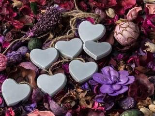 Собирать пазл Сердечки и гербарий онлайн