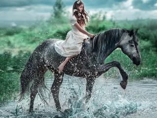 Собирать пазл Серый конь онлайн