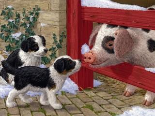 Собирать пазл Щенки и свинья онлайн
