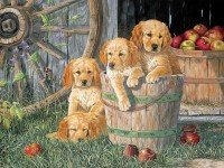 Собирать пазл Щенки и яблоки онлайн