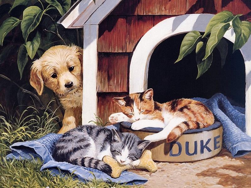 Пазл Собирать пазлы онлайн - Щенок и котята