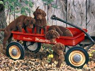 Собирать пазл Шоколадные щенки онлайн