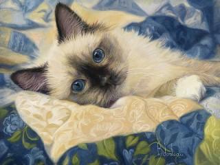 Собирать пазл Сиамский котёнок онлайн