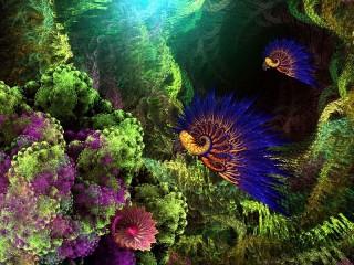 Собирать пазл Синие раковины онлайн