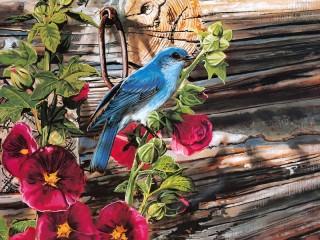 Собирать пазл Синяя птичка 1 онлайн