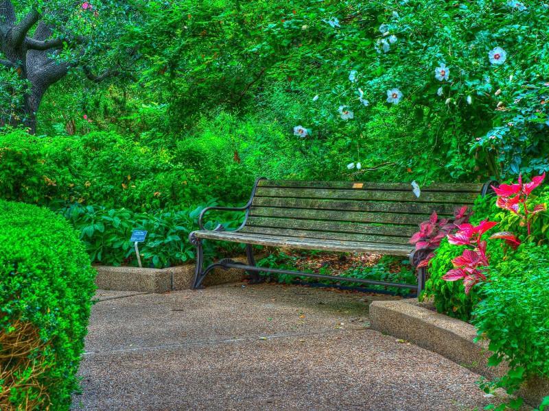 Пазл Собирать пазлы онлайн - Скамейка в парке